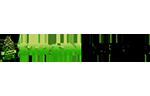 strain insider logo